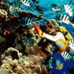 Belajar Diving di Pantai Kuta