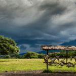 Lokasi Dan Keindahan Taman Wisata Baluran