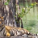 10 Tempat Wajib Anda Kunjungi di Sumatera Selatan
