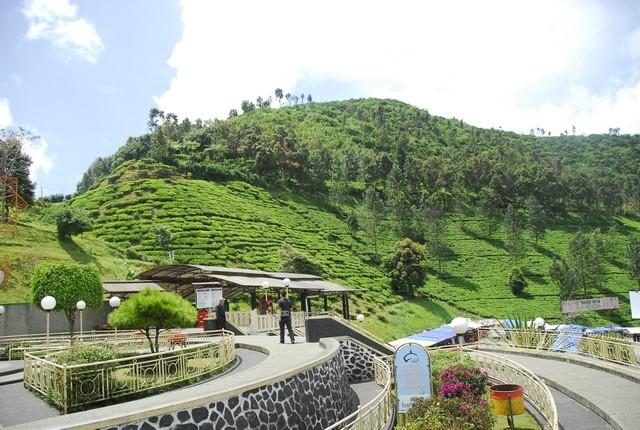 Wisata Taman Riung Gunung Puncak