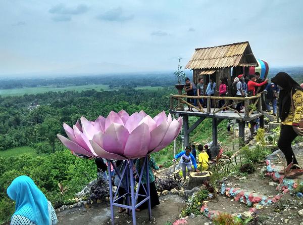 Bukit Bonsai Kademangan Watulawang Spot Wisata Baru Blitar